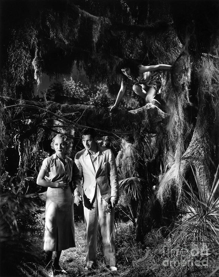 1932 Photograph - Island Of Lost Souls 1932 Leila Hyams Richard Arlen Kathleen Bur by Sad Hill - Bizarre Los Angeles Archive