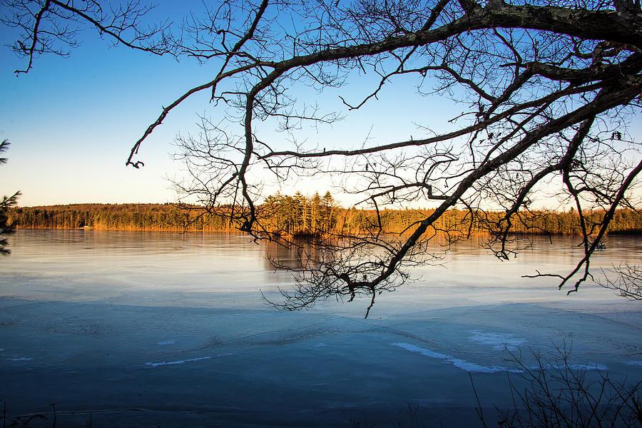 Island Reflection by Robert McKay Jones