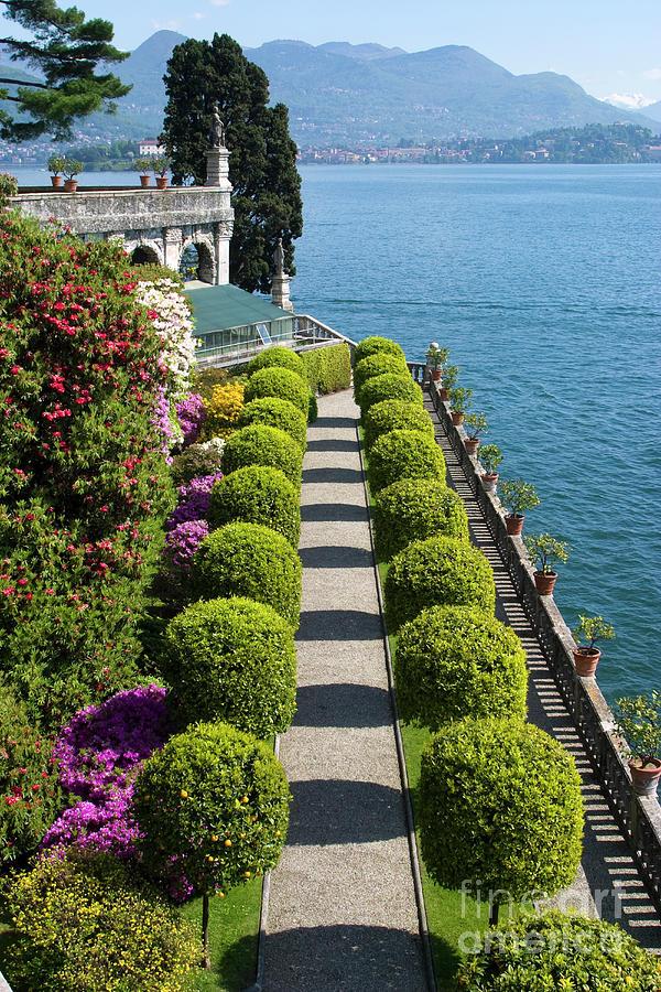 Lake Photograph - Isola Bella, Lake Maggiore, Italy by Damian Davies