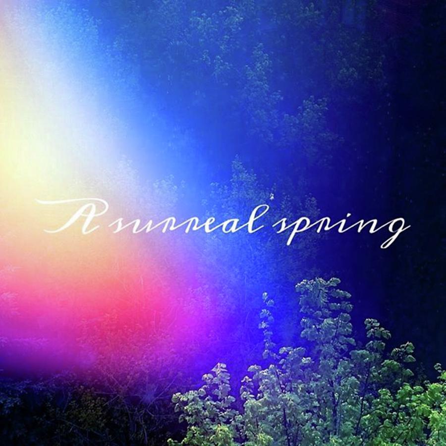 It Already Feels Like A Surreal Spring! Photograph by Ishane Perera