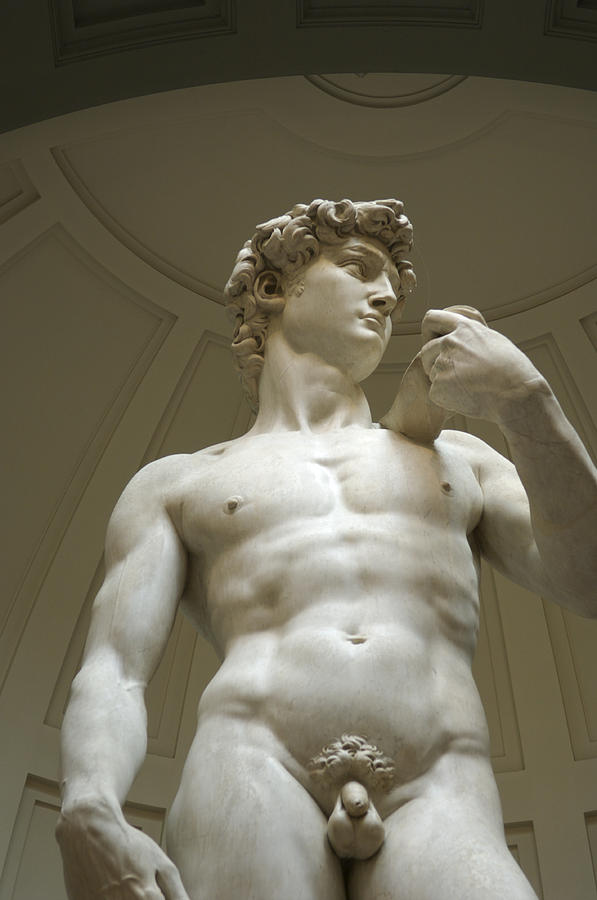 Accademia Photograph - Italy, Florence, Statue Of David by Sisse Brimberg & Cotton Coulson