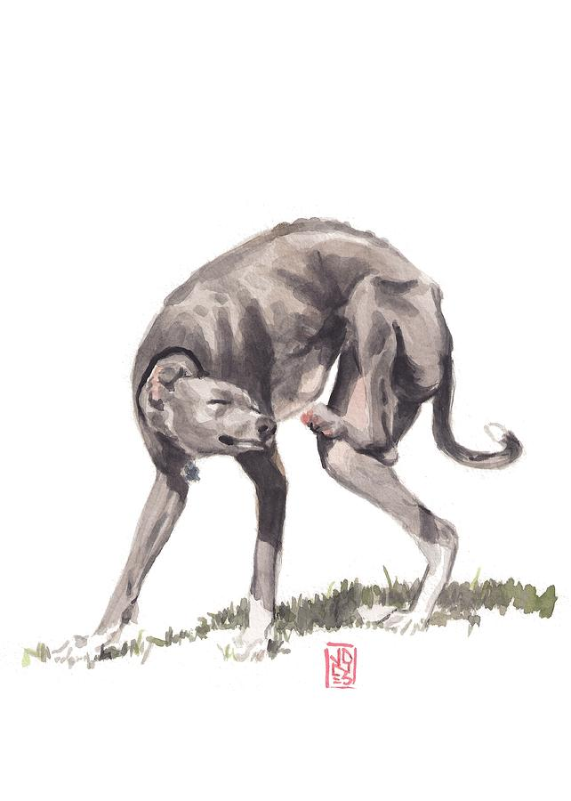 Italian Greyhound Painting - Itchy Italian by Debra Jones