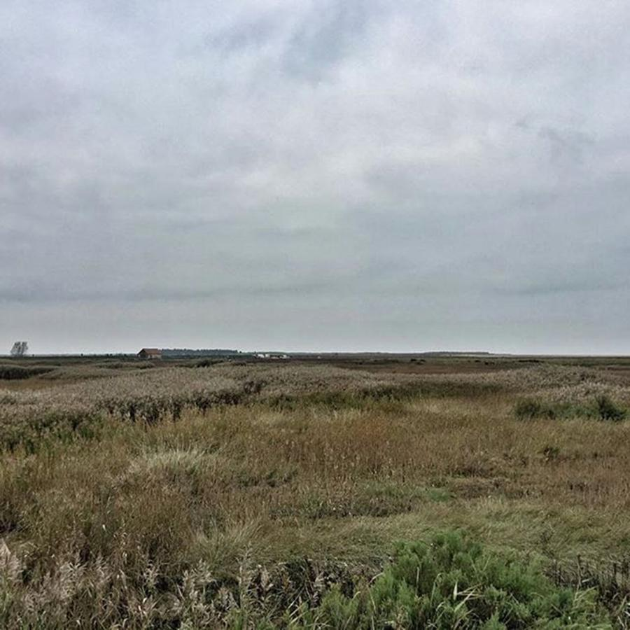 Nature Photograph - Its A Grey Day In North Norfolk Today by John Edwards