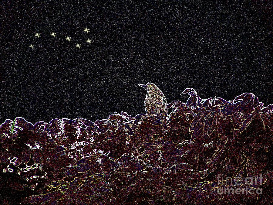 Heron Digital Art - Its Almost Dawn by Kathy Daxon