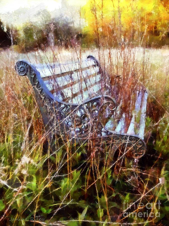 Park Bench Photograph - Its Been Awhile - Park Bench by Janine Riley