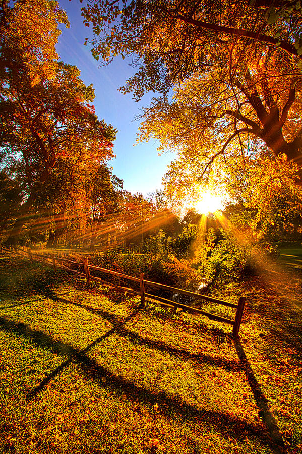 Fence Photograph - Ive Done My Days Riding by Phil Koch