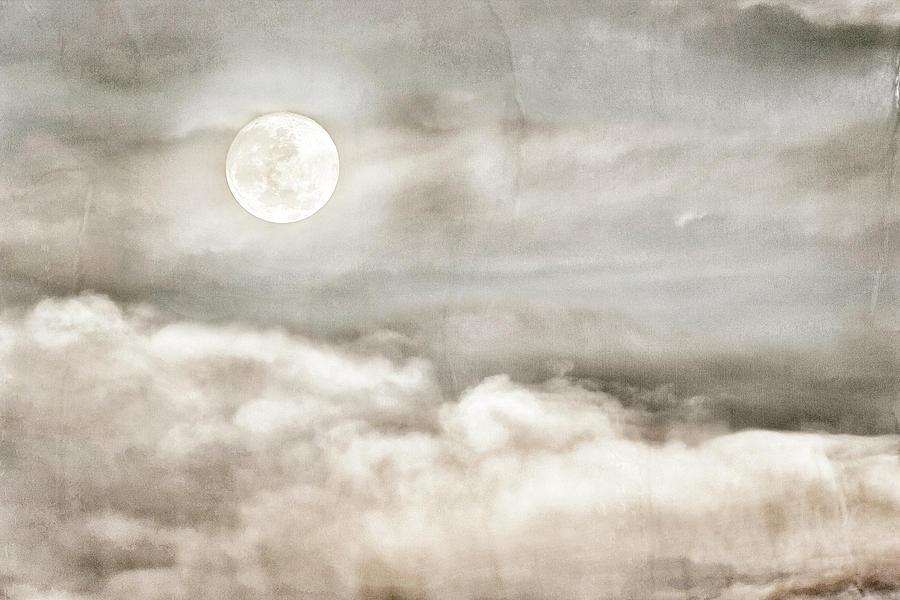 Ivory Moon by Dianna Lynn Walker