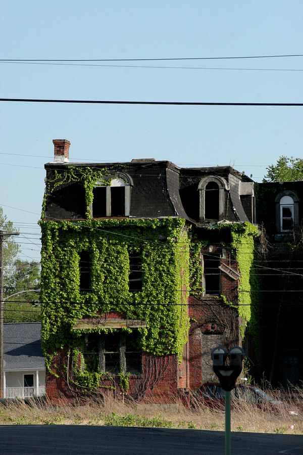 House Photograph - Ivy Consumes by ShadowWalker RavenEyes Dibler