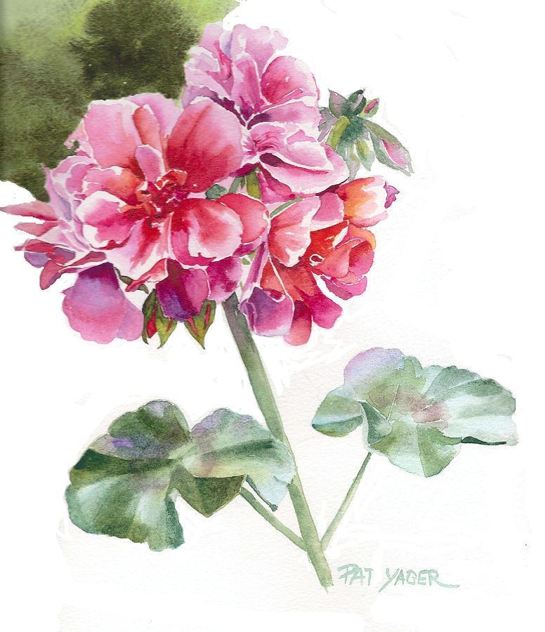 Ivy Geranium Molina Painting By Pat Yager