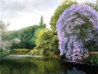 Jacaranda Tree Painting - Jacaranda by Laura Wynne