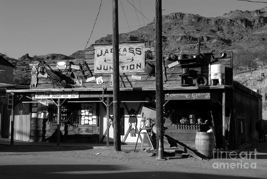 Arizona Photograph - Jackass Junction by David Lee Thompson