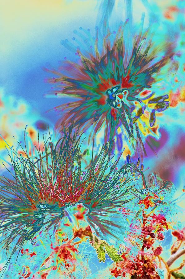 Jackson Pollok's Weeds  by Richard Henne