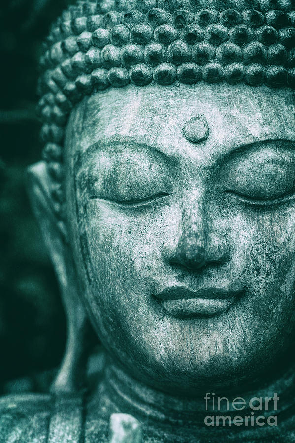 Buddha Photograph - Jade Buddha by Tim Gainey