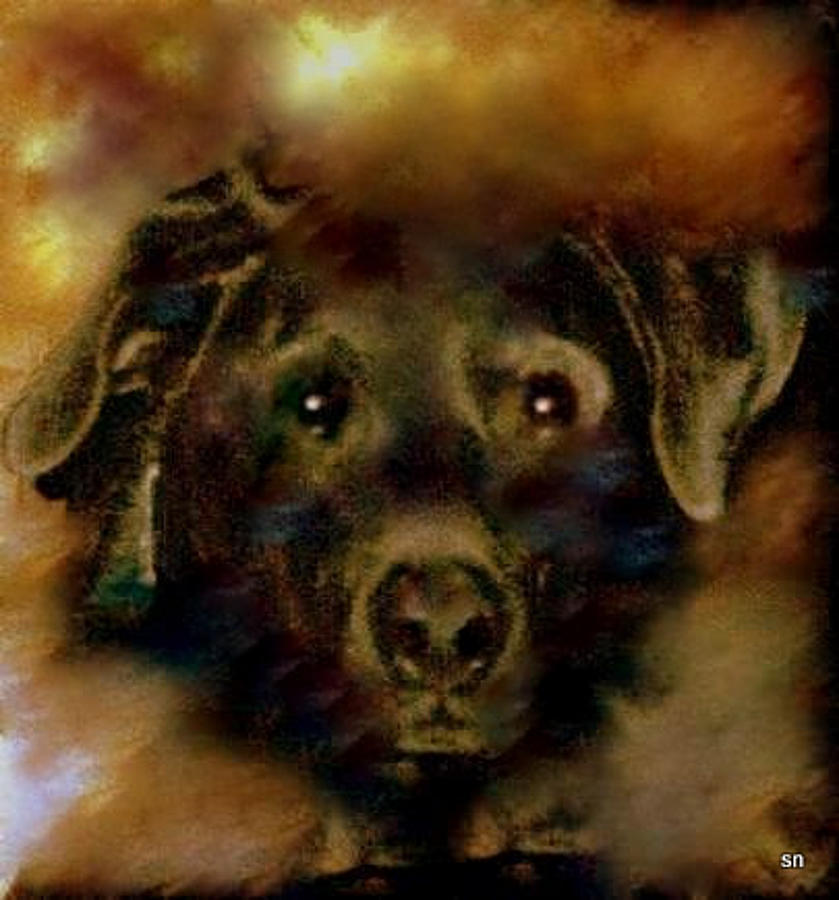 Lab Painting - Jade-my Special Lab by Sherris Of Palm Springs