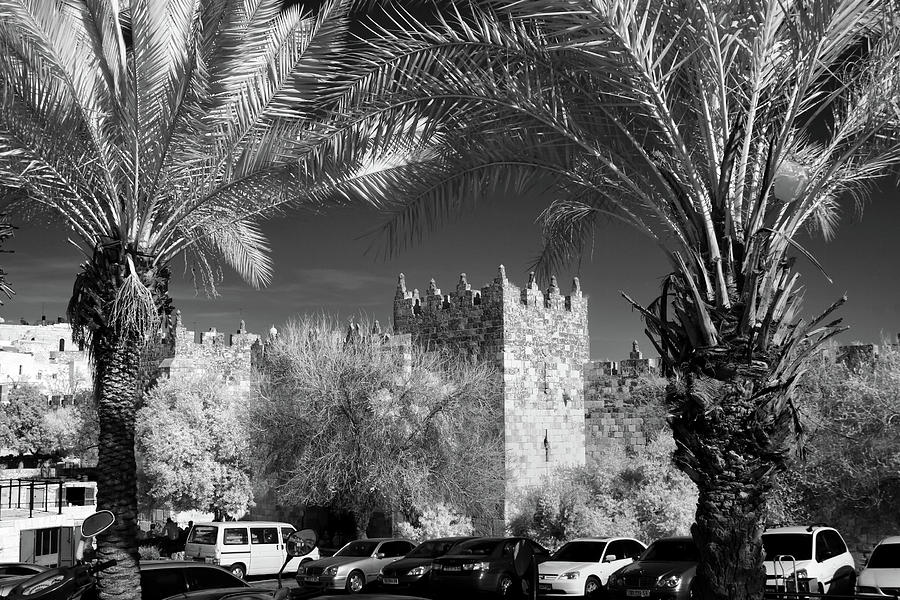 Jaffa Gate Photograph - Jaffa Gate by Zoriy Fine