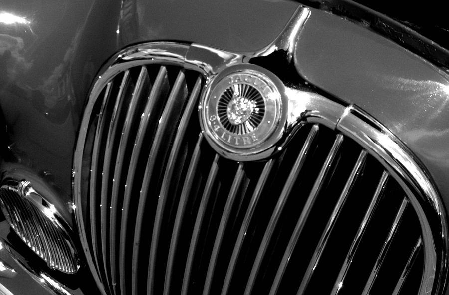 Car Photograph - Jaguar by Audrey Venute