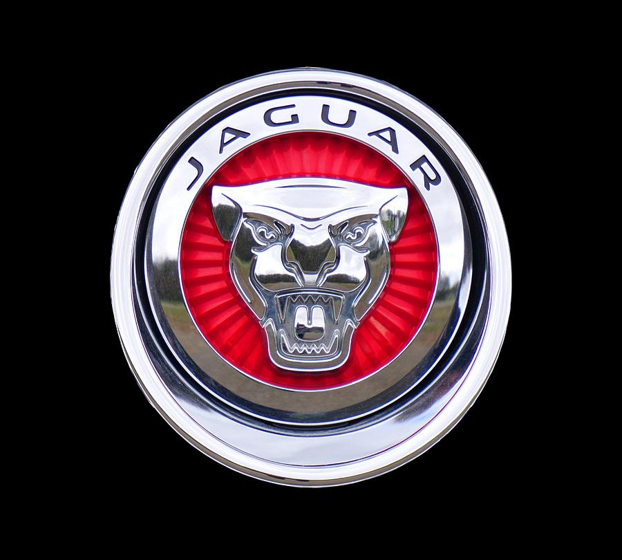 Jaguar Photograph - Jaguar Emblem by Ericamaxine Price