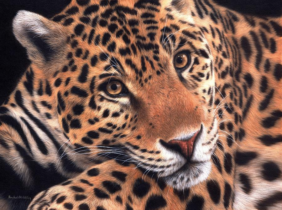 Jaguar Painting by Rachel Stribbling