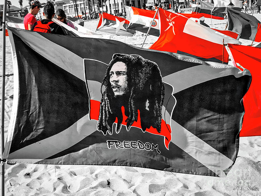 Jamaica and Bob Marley Flag #2 by Julian Starks