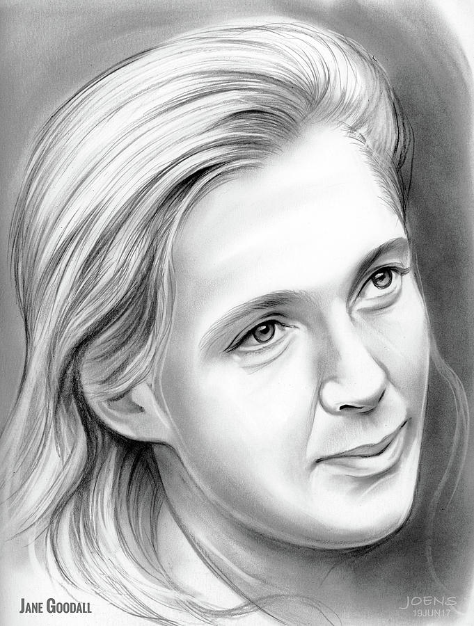 Jane Goodall Drawing