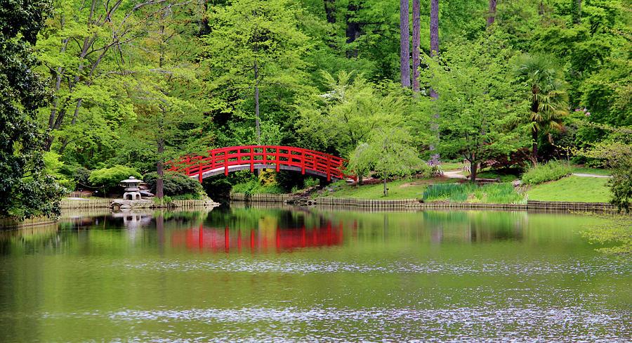 Japanese Garden Photograph - Japanese Garden Bridge  by Cynthia Guinn