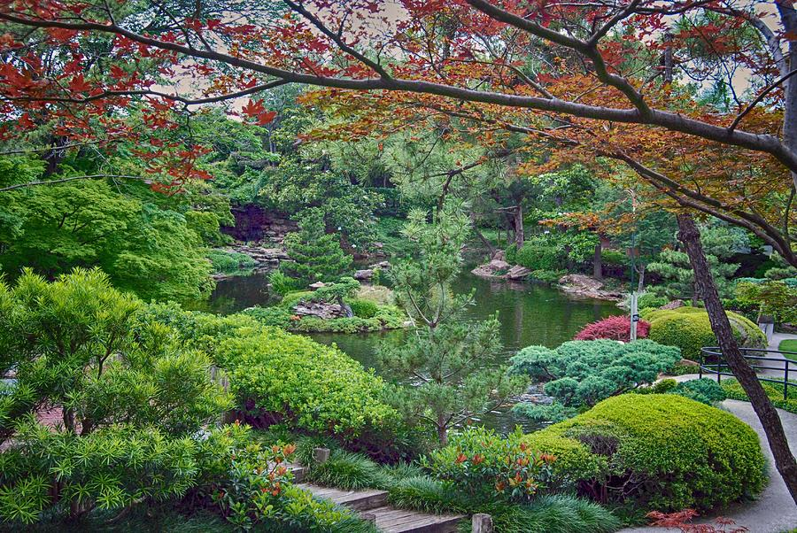 Japanese Garden, Fort Worth, Texas Photograph by Andy Shaw
