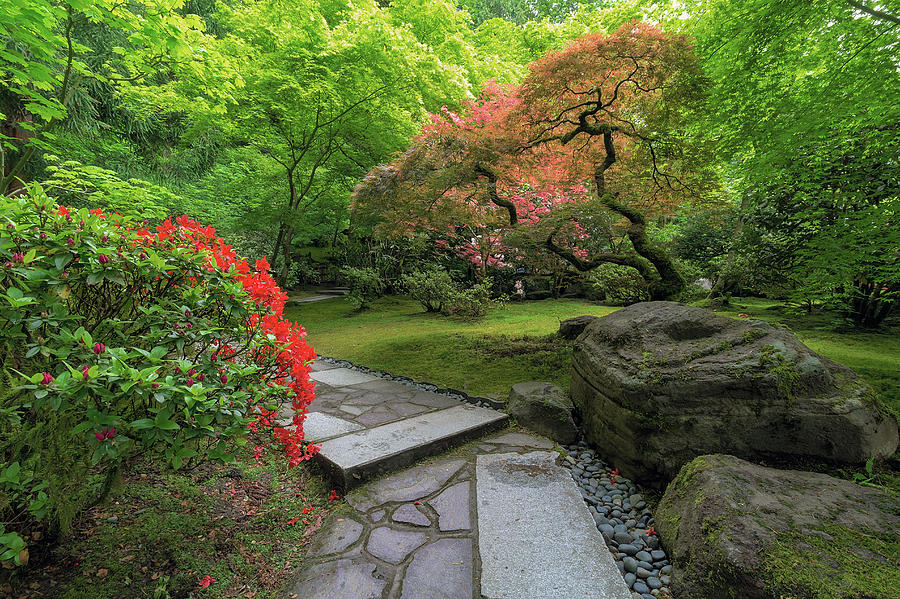Path Photograph - Japanese Garden Strolling Stone Path by David Gn