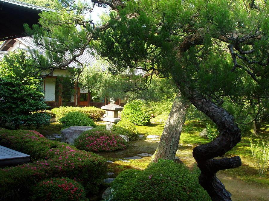 Japan Photograph - Japanese Garden V by Wendy Uvino