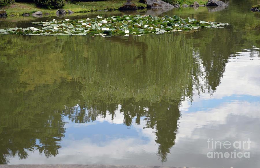 Japanese Gardens 2 by Carol Eliassen