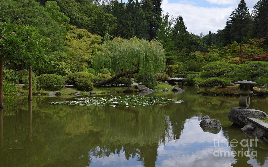 Japanese Gardens 3 by Carol Eliassen