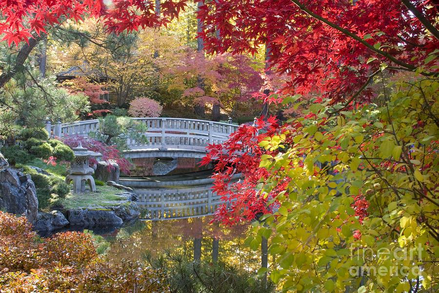 Gardens Photograph - Japanese Gardens by Idaho Scenic Images Linda Lantzy