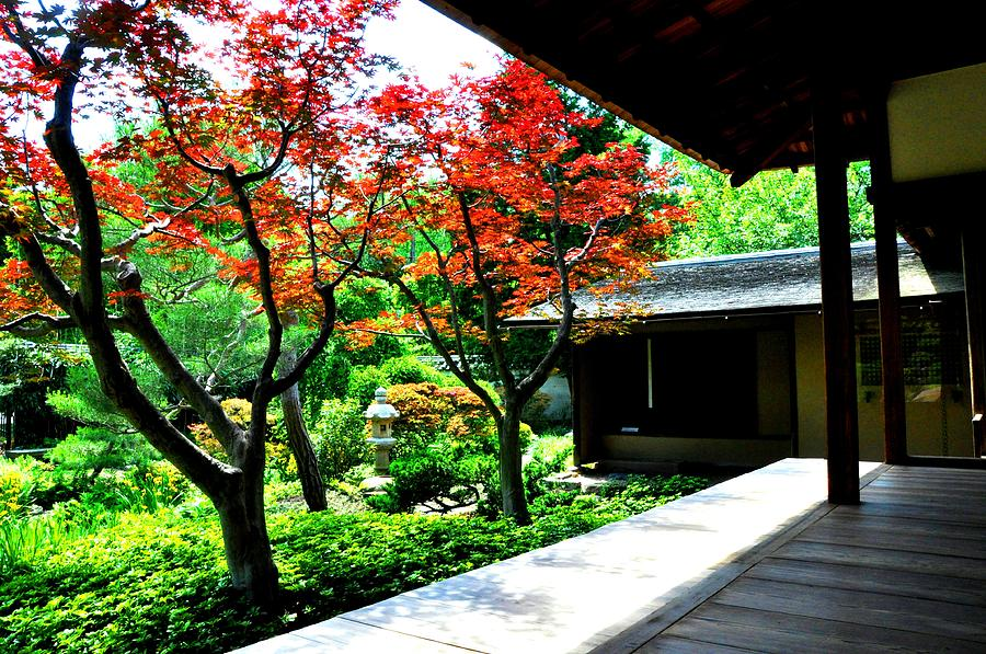 Pa Photograph - Japanese House by Andrew Dinh