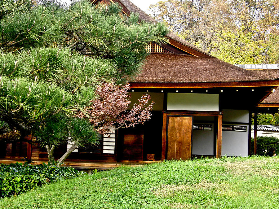 Glamorous Modern Japanese Houses For Sale Contemporary - Simple ...
