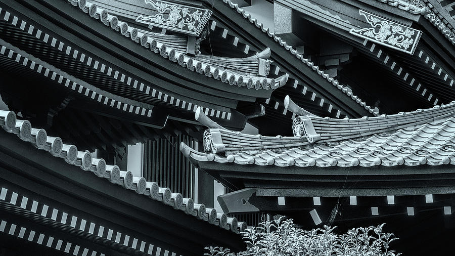 Japanese temple roofs by Ponte Ryuurui