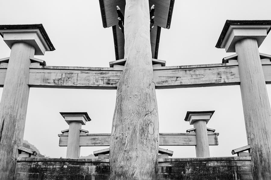 Kyoto Photograph - Japanese Texture #74 by Hieu Tran