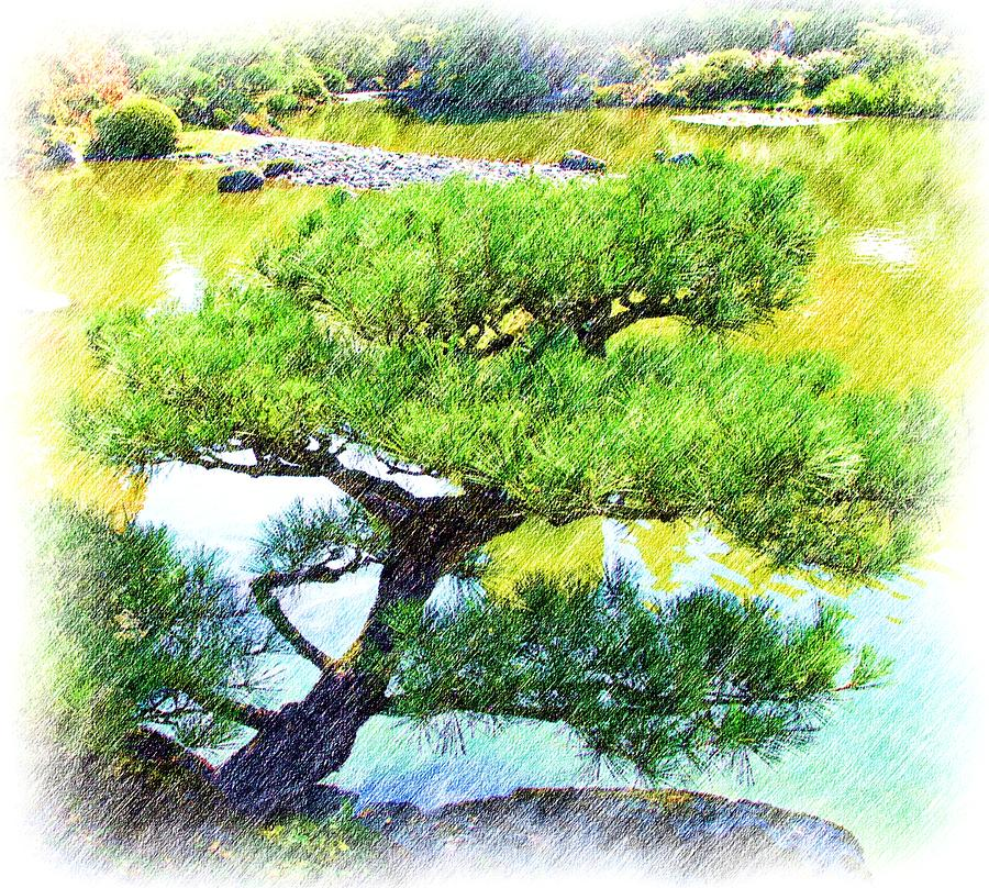 Woods Photograph - Japanese Tree by Ralph Liebstein