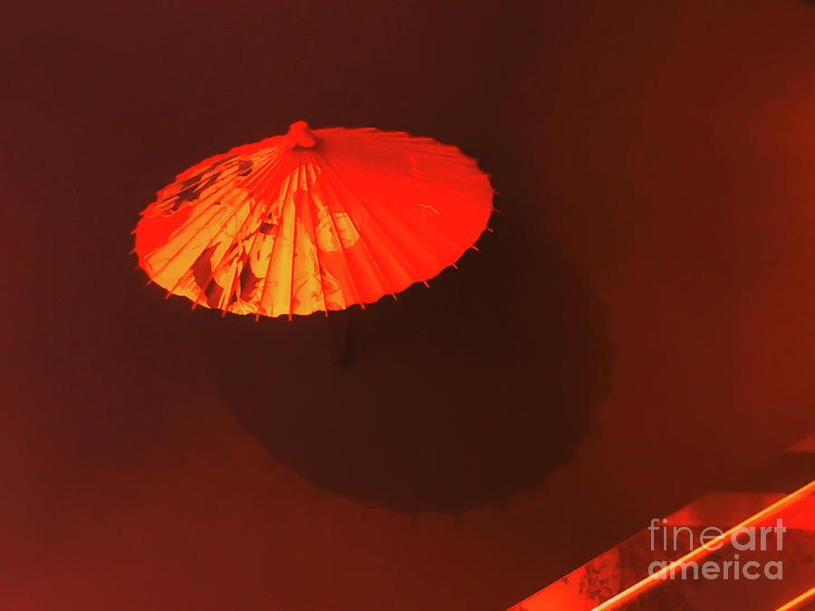 Japanese Umbrella  by Camille Pascoe