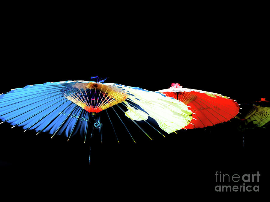 Japanese Umbrellas Assorted Colors by Camille Pascoe