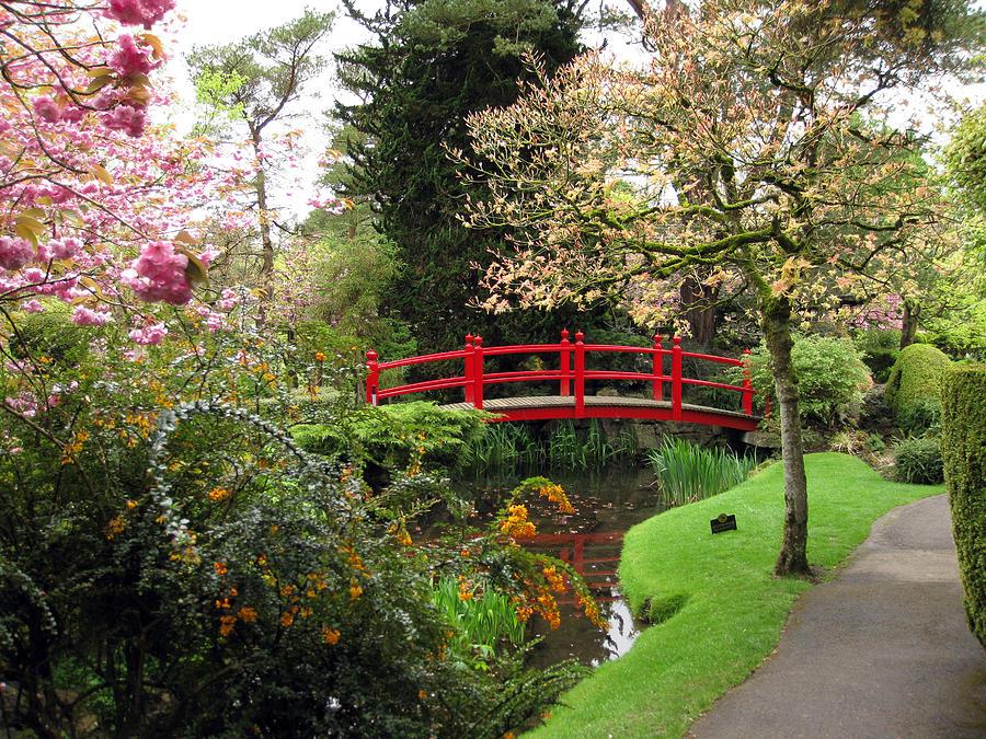 Japanese Gardens Photograph - Japenese Gardens by John Quinn