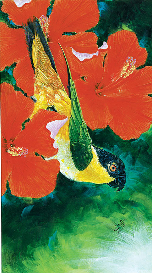 Parrot Painting - Jasper by Durwood Coffey