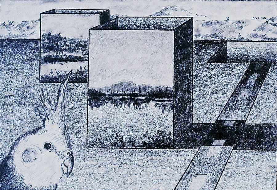Bird Drawing - Java by Ronald Walker