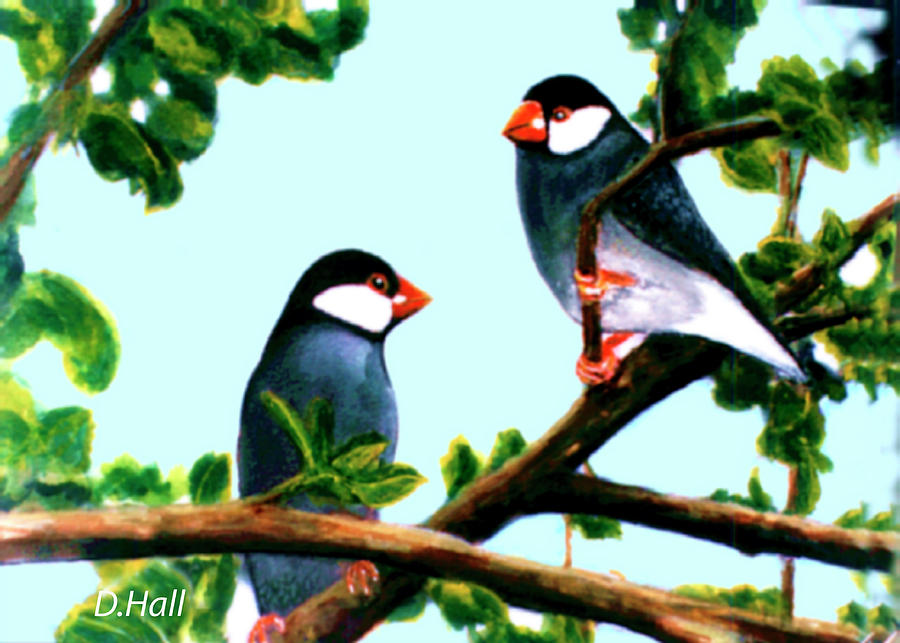 Java Sparrows Painting - Java Sparrows  #102 by Donald k Hall