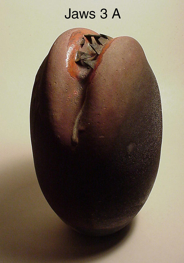 Raku Sculpture - Jaws 3 A by Skip Bleecker
