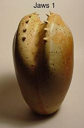 Ceramics Sculpture - Jaws One by Skip Bleecker