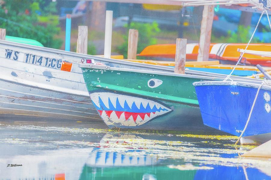Jaws Photograph