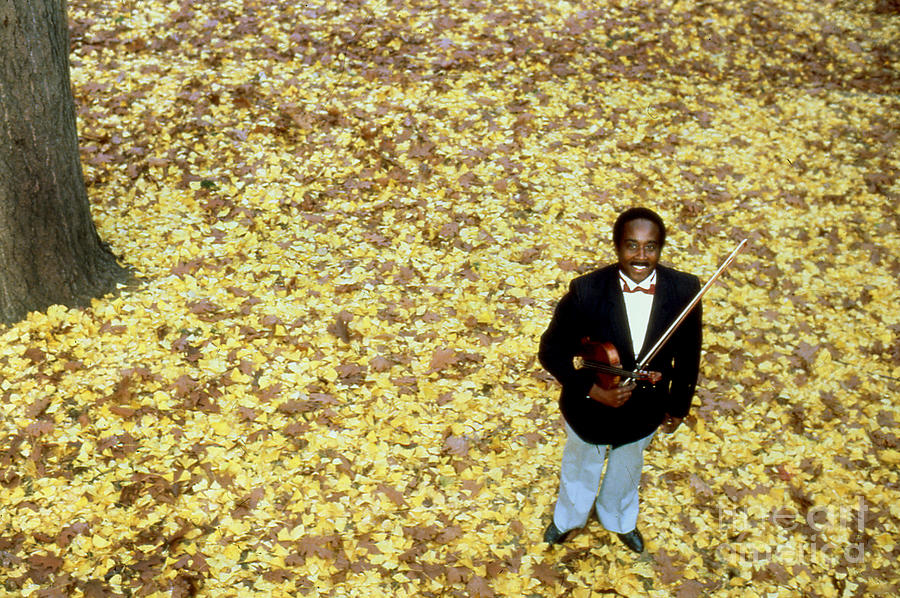Jazz Photograph - Jazz In The Leaves by Enid Farber