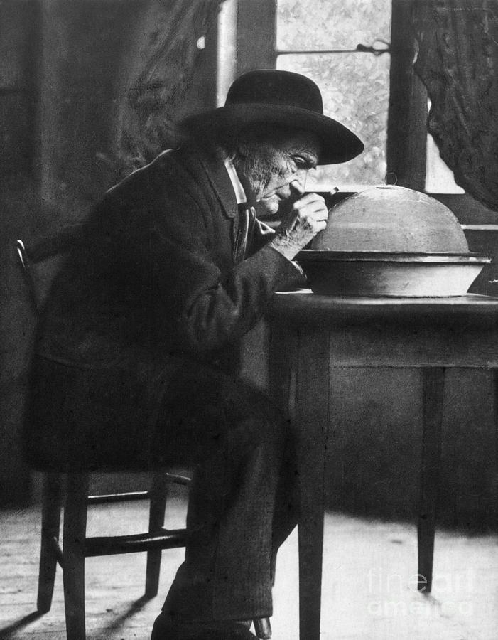 Jean Henri Fabre Photograph by Granger