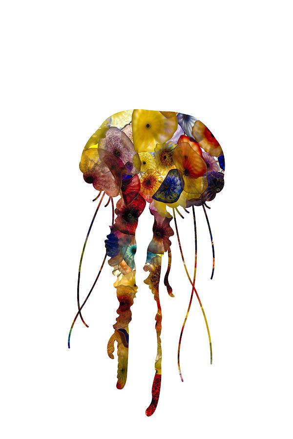 Jellyfish Photograph - Jellyfish by Michael Colgate