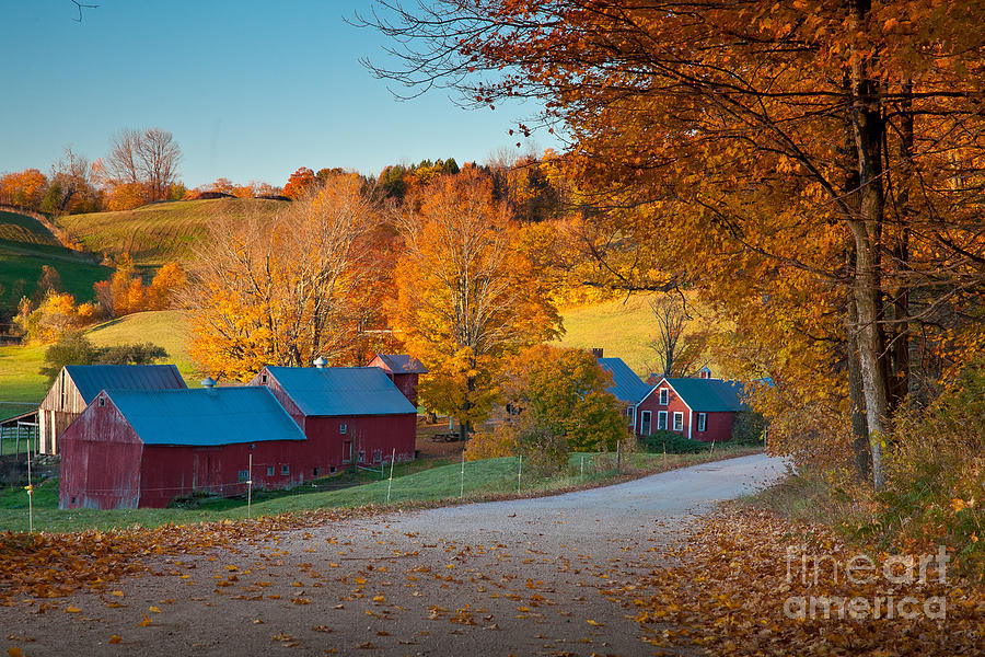 Agriculture Photograph - Jenne Farm Glow by Susan Cole Kelly