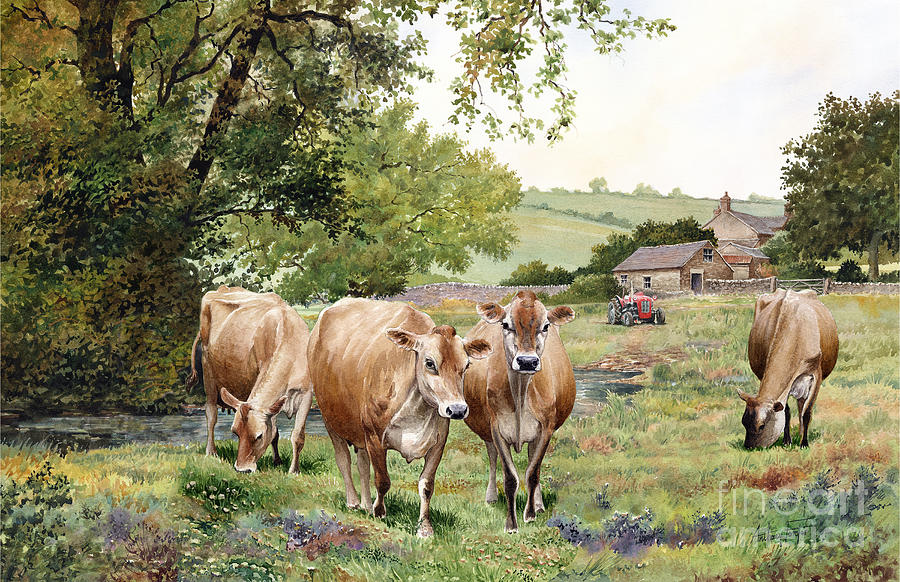 Watercolour Painting - Jersey Cows by Anthony Forster